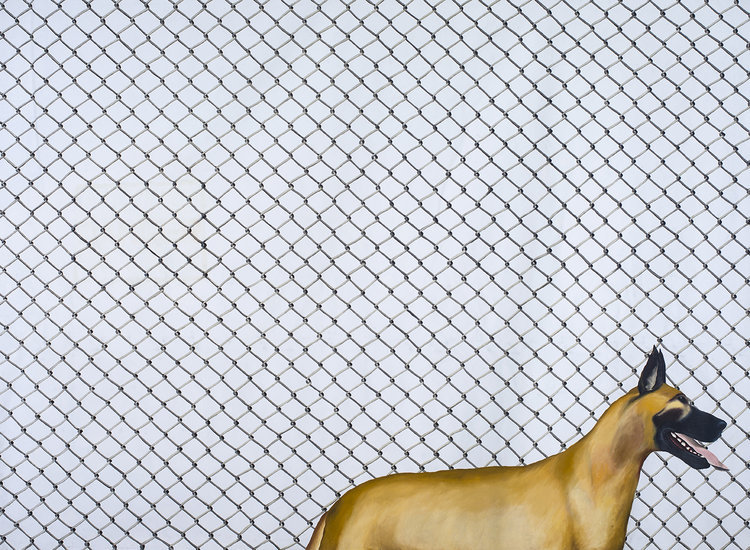 Jenny Watson, Cyclone fence with Great Dane 1972, oil and acrylic on ten ounce cotton duck. Courtesy and © the artist. Photograph by Carl Warner